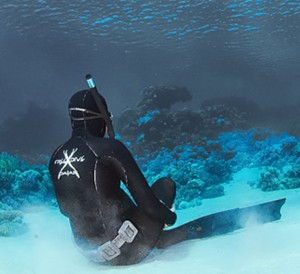 choosing freediving