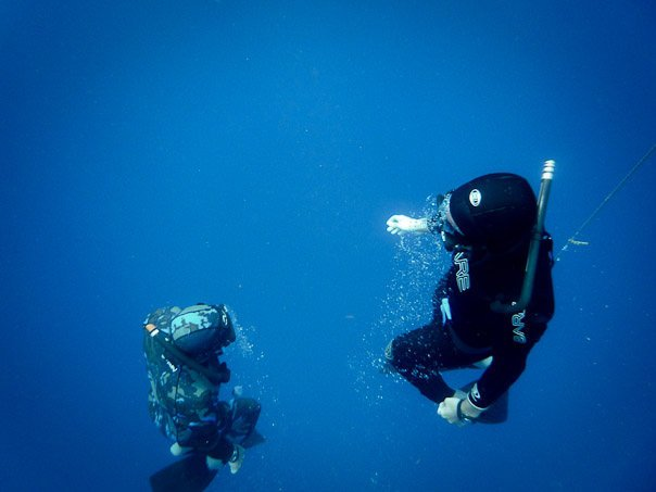 freedive underwater safety