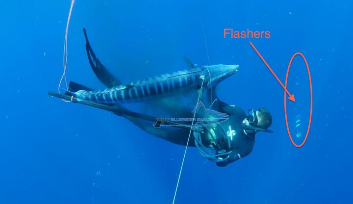 spearfishing gear wahoo flashers setup
