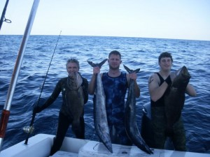 freedive spearfishing wahoo and grouper