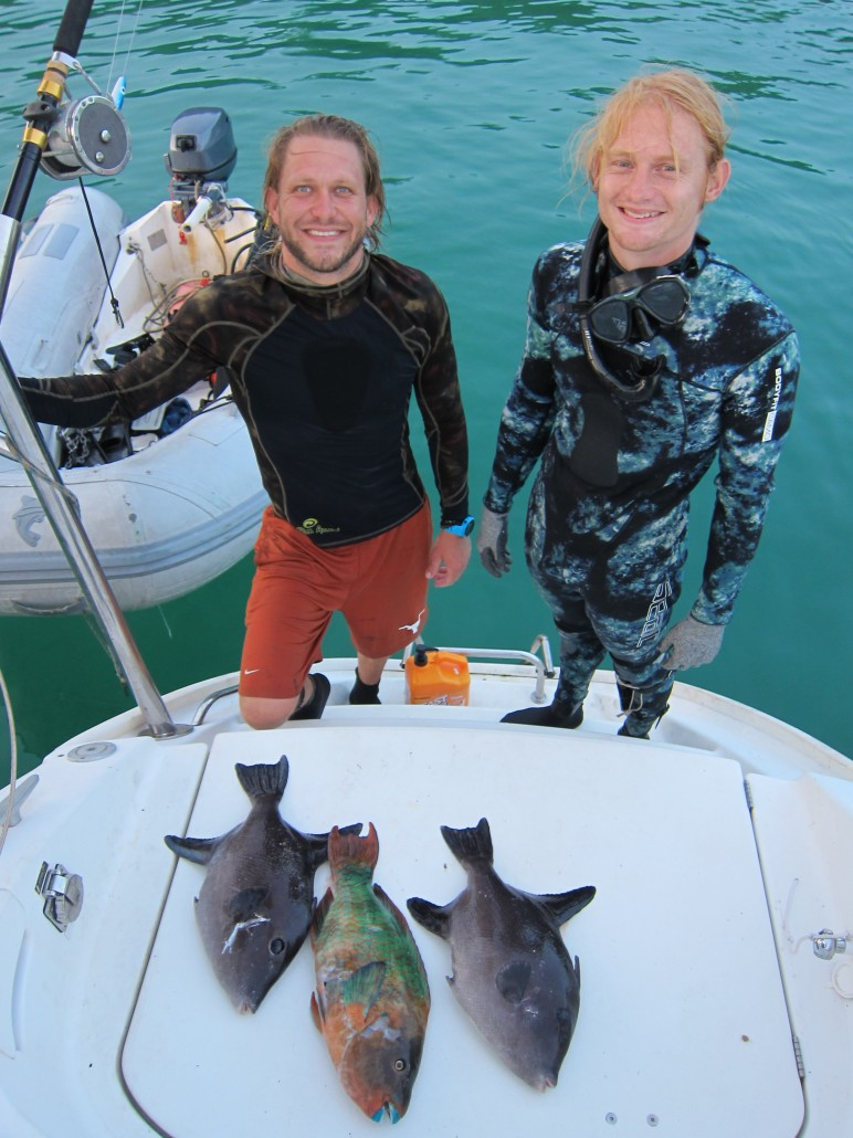 Spearfishing for Dinner