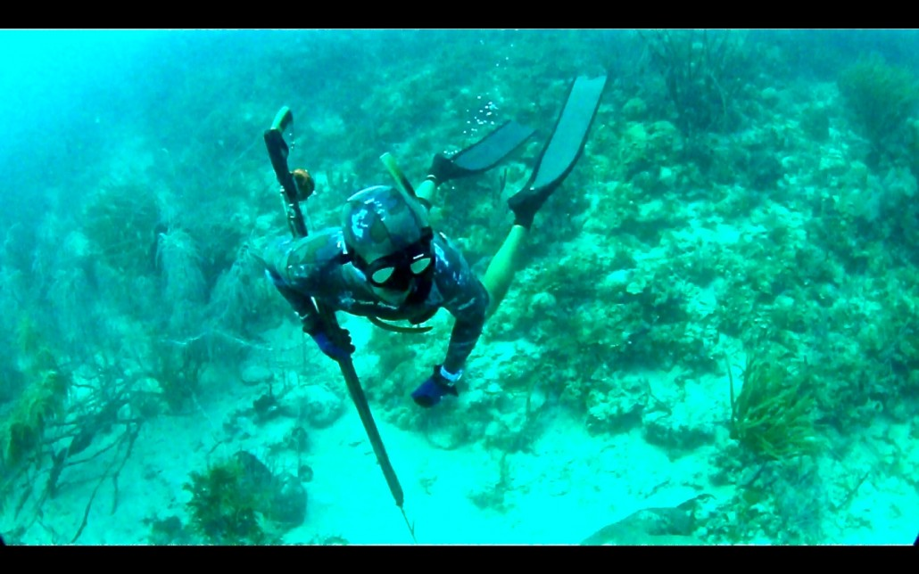 Watermaker Hell (and Freediving)