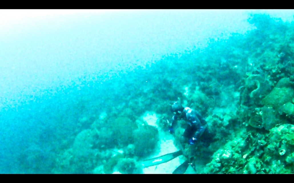 Spearfishing in San Blas