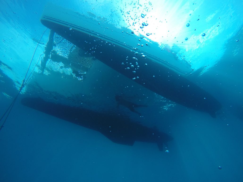 Freediving under the catamaran in San Blas